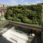 Photo of vertical garden by G Smith
